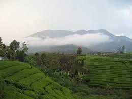 Informasi seklias gunung talang di kabupaten solok sumbar