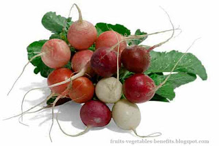 benefits_of_eating_radishes_fruits-vegetables-benefits.blogspot.com(benefits_of_eating_radishes_2)