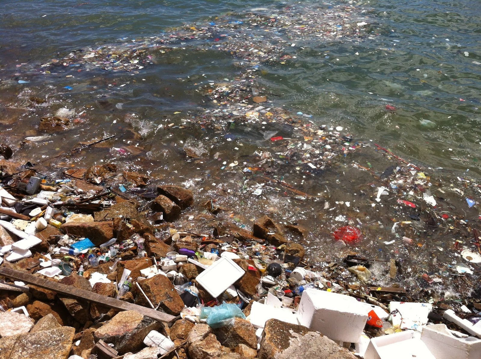 Eastern pacific garbage patch photos 13 Old Bronx Pics You May Not Recognize - Welcome2TheBronx