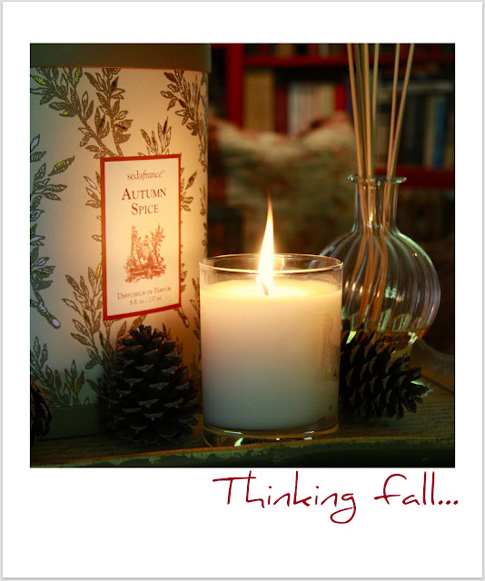 Momster Blog Fall Scent for Your Home A Designer Dad Favorite from familycircle.com