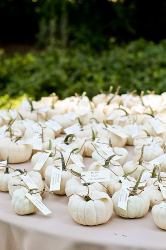 Elegant Pumpkin Wedding Decor Ideas card holders