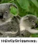 http://megatopic.blogspot.com/2013/09/10_27.html