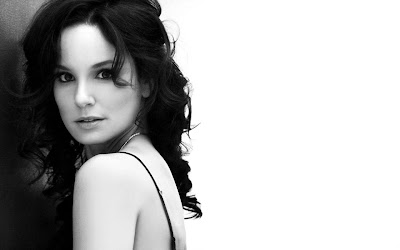 American Beauty Sarah Wayne Callies