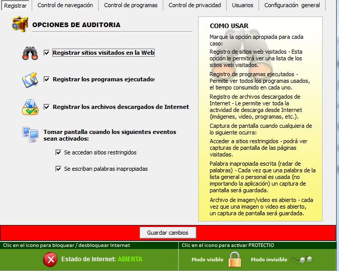 Formulario de opciones de auditoría