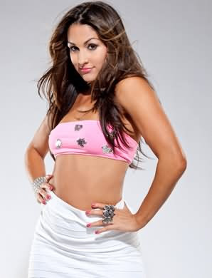 WWE Nikki Bella Cool