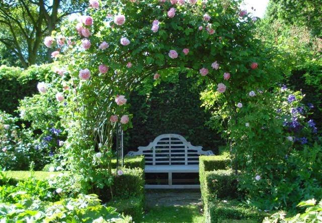 Romantic rose garden