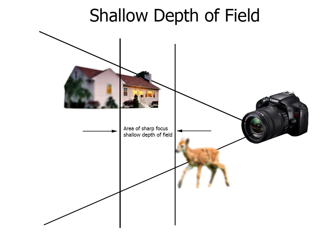 the depth of - photo #7