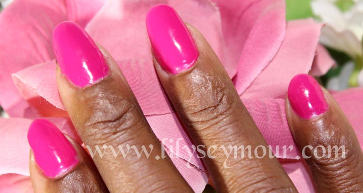 Fuchsia Color Gel from JunYu Nail Systems