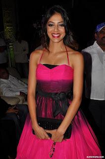 Parvathi melton at Srimannarayana Triple platinum pics (5)