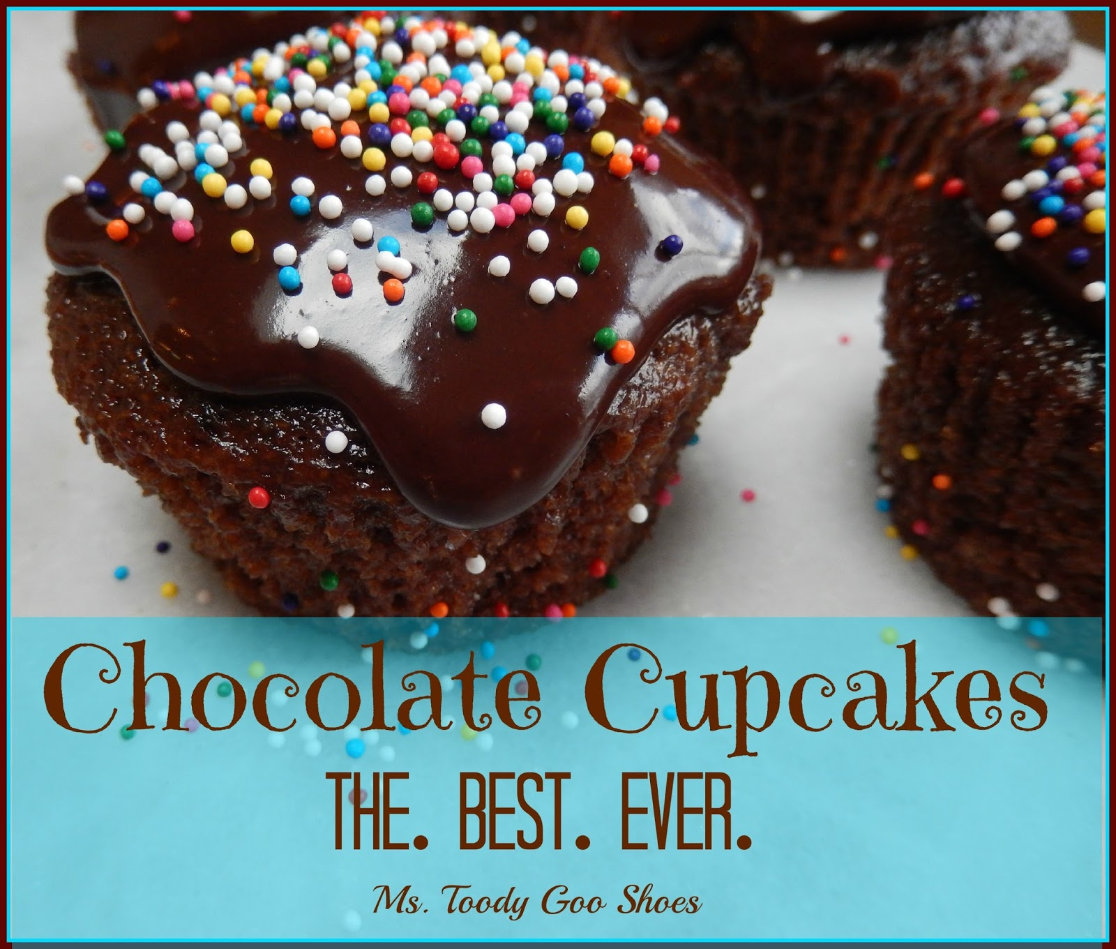 The Best-Ever Chocolate Cupcakes: One bowl, no mixer! -- Ms. Toody Goo Shoes