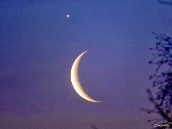 GALERI: Foto-foto Konjungsi Bulan dan Venus (26/2)