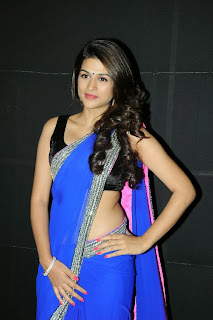 Actress Shraddha Das  Pictures in Saree at Rey A to Z Look Launch 0019.jpg