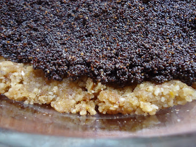 Raw Vegan Poppyseed Pastry from Brigitte Mars's