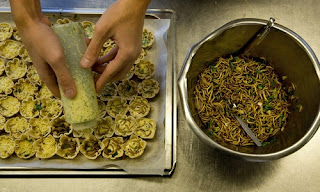 Cocinando con insectos 6