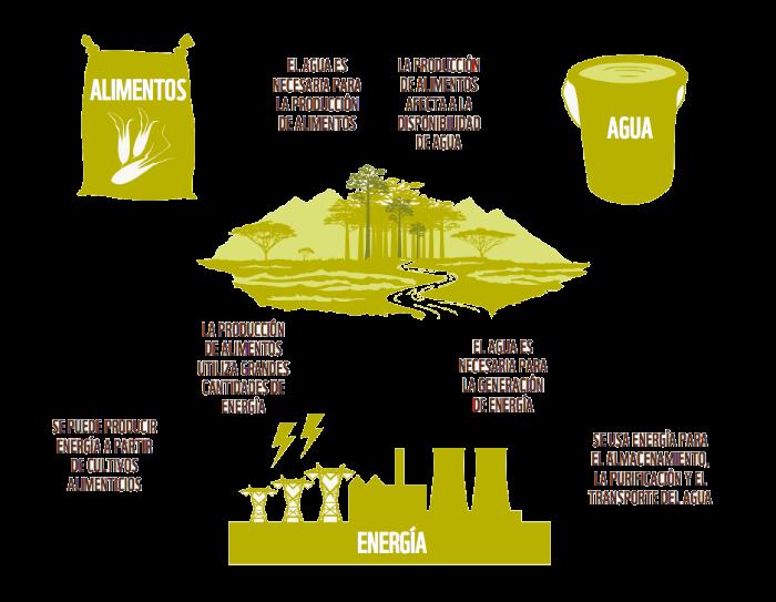 Informe Planeta Vivo. Alimentación WWF