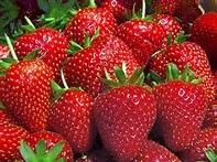 Cara Mencegah Kepikunan Dini dengan Buah Strawberry