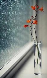 မိုး...................