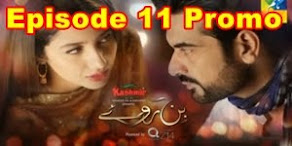 Bin Roye Episode 11 Promo on Hum Tv