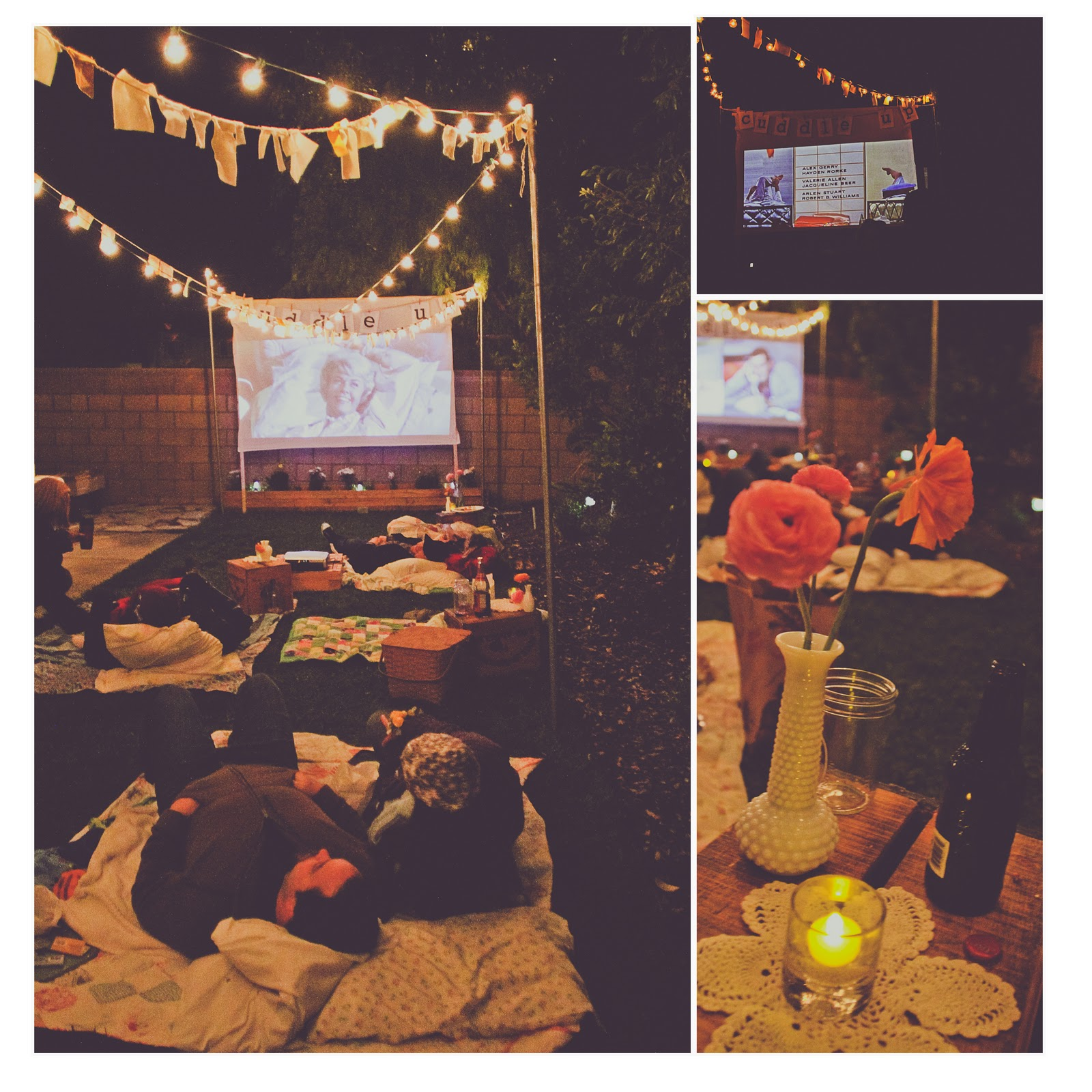 Backyard Movie Night Party : Image hereplus lots more pretty party pictures