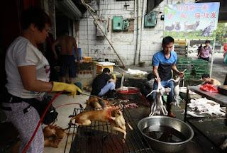 Dog-Eating Festival