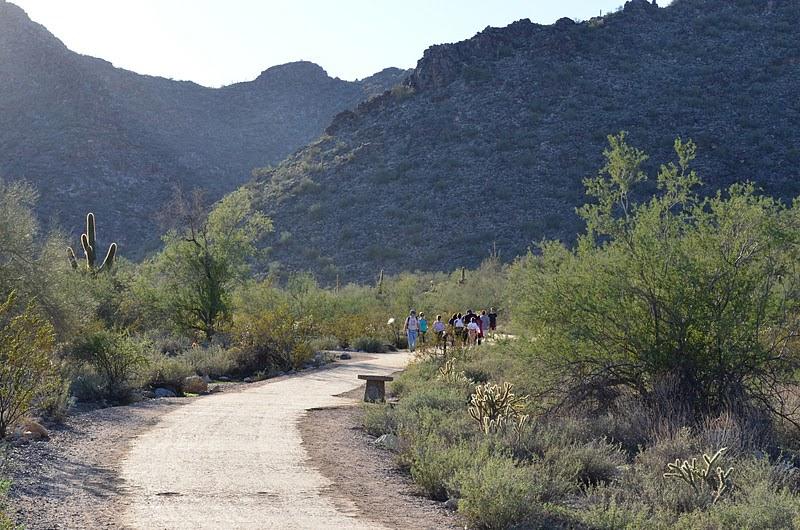 Practical Biology Science For Everyone Sonoran Desert Manual Guide