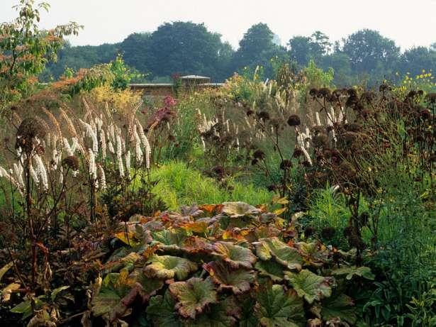 Native garden textures piet oudolf new perennial for Landscapes in landscapes piet oudolf