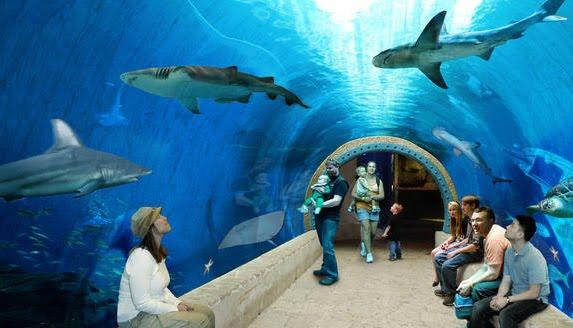 Utah Public Aquarium : Utahs Labor Market and Economy: February 2012