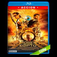 Dioses de Egipto (2016) BRRip 720p Audio Dual Latino-Ingles
