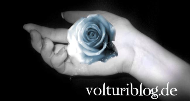 Volturi Blog