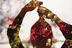 ''Alimente a mente com flores''