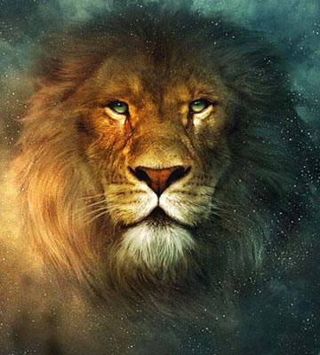 Lion,Lions,Lions Wallpaper