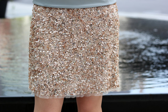 Zara Sequin Skirt