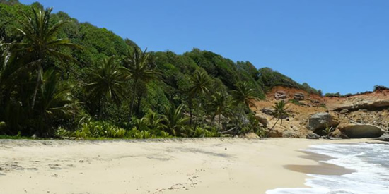 Beachfront land for sale, Turtle Beach, Woodford Hill, Dominica