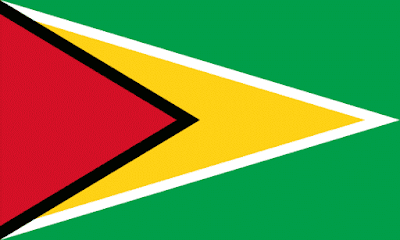 Download Guyana Flag Free