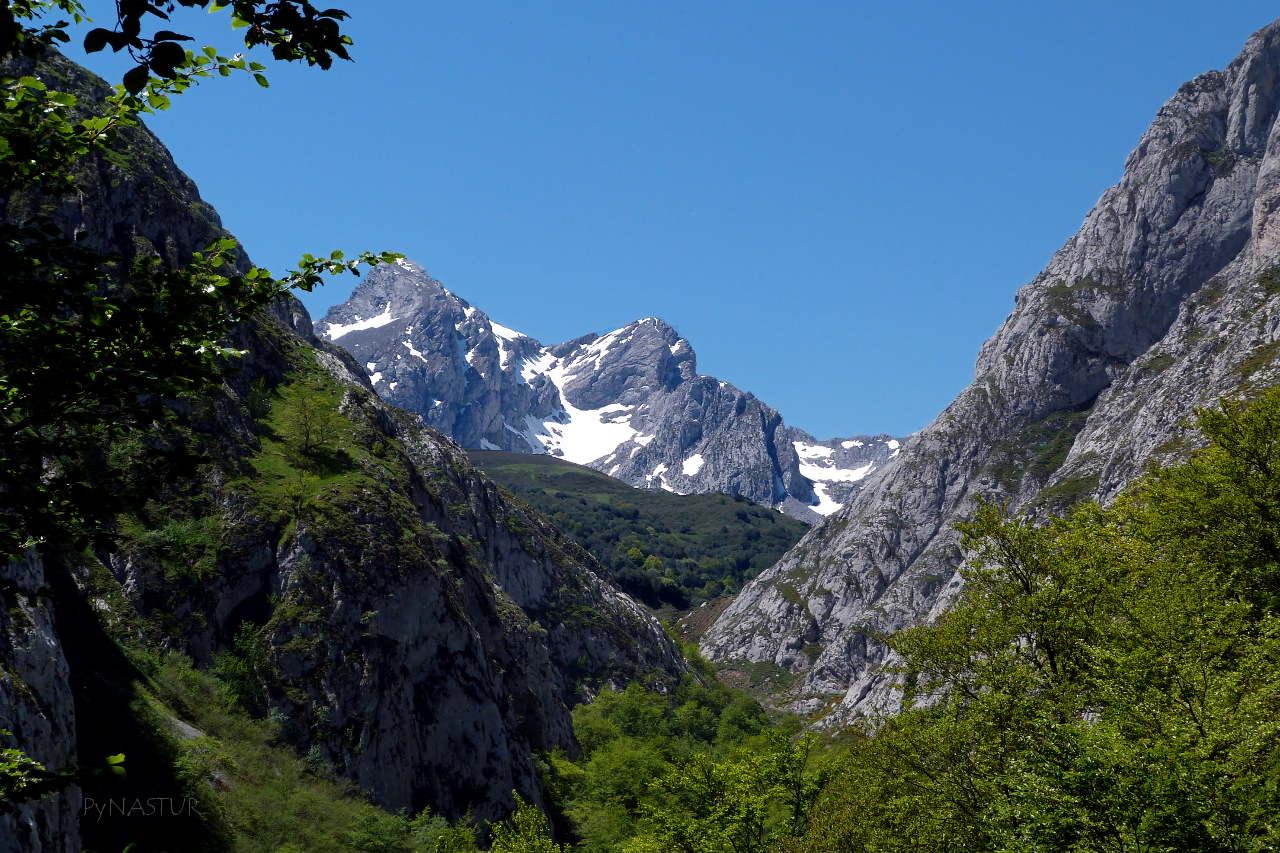 Bosque de Lindes - Quirós