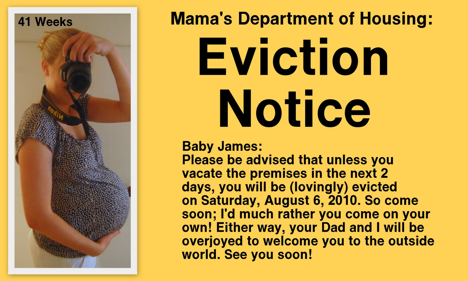 Displaying 20> Images For - Baby Eviction Notice Template...