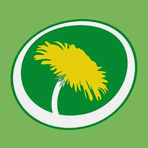 Miljöpartiet de gröna Ljusdal