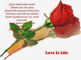 PUISI CINTA ROMANTIS - Puisi Cinta Romantis Terbaru 2014