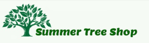 Visit Summer Tree on Amazon