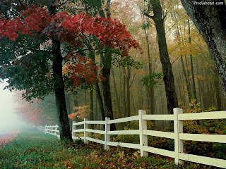 Nature-Autumn-Wallpapers