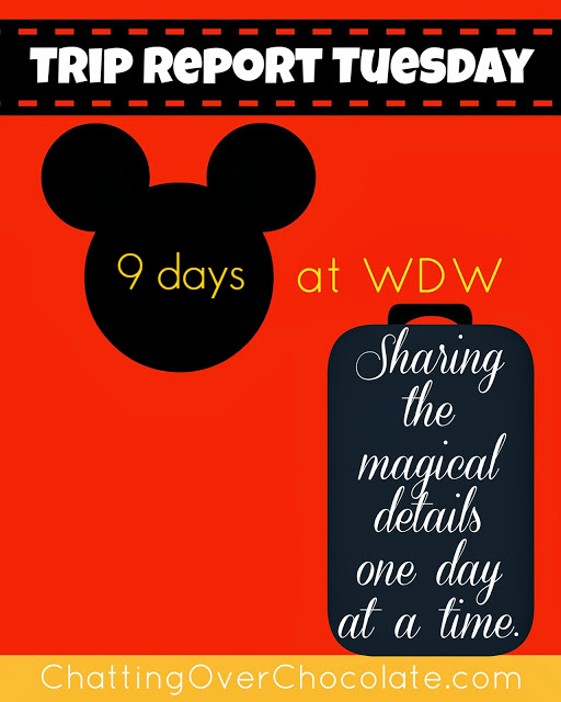 Chatting Over Chocolate: Disney World Trip Reports!
