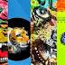 Exposicion de artes Visuales - Feliforma (del 02 al 16 de Octubre)