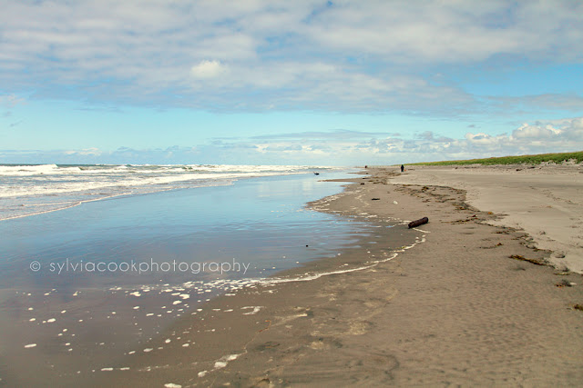 Long Beach Washington ocean photograph