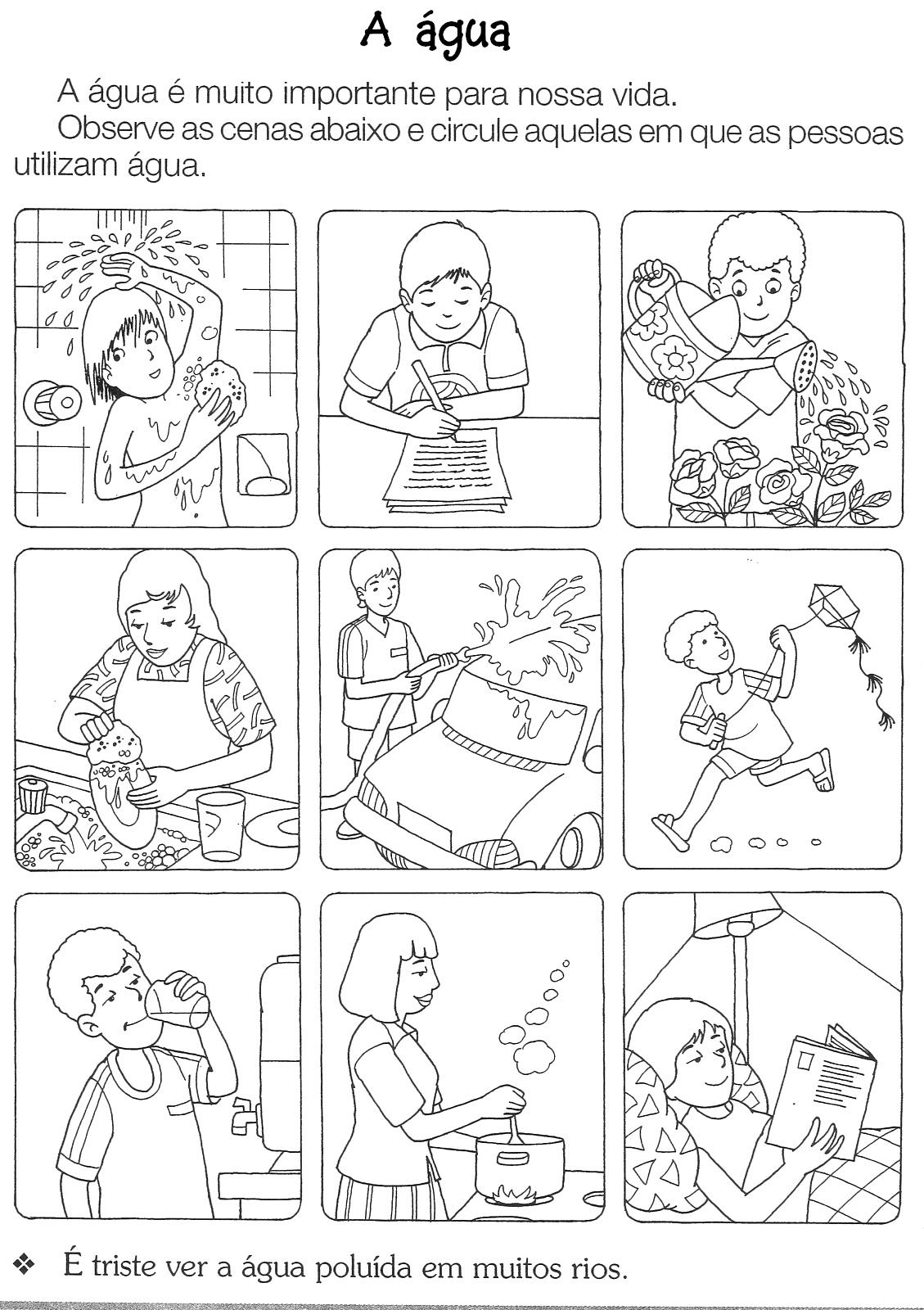 Atividade De Ci  Ncias Para Imprimir     Gua