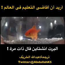 أريد أن أقاضي نظام التعليم في العالم ! وبالأخص عالمنا العربي ؟!