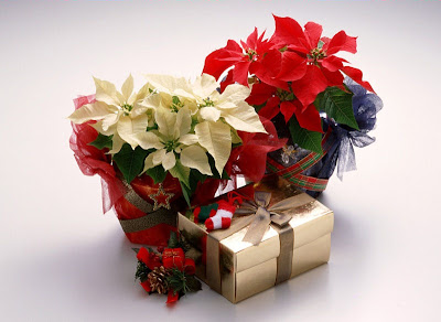 Imágenes para Navidad, Esferas, Regalos y Santa Claus