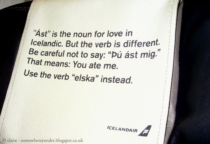 Iceland Air aeroplane seat headrest