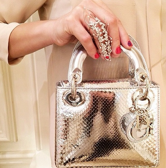42969646abcd Mademoiselle Shosho.  Bag Crush  Silver Lady Dior Bag.