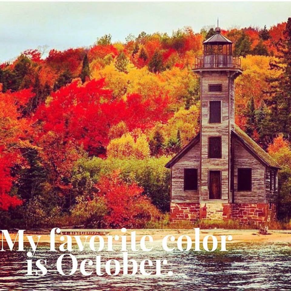 the primary fall favorites and freebies just reed