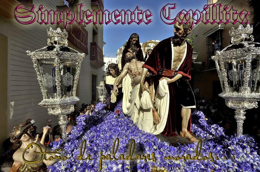 SIMPLEMENTE CAPILLITA